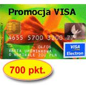 119-visa-700.jpg